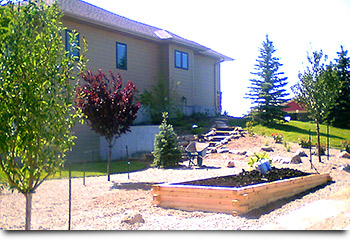 raised vegetable gardens denver | colorado landscaping